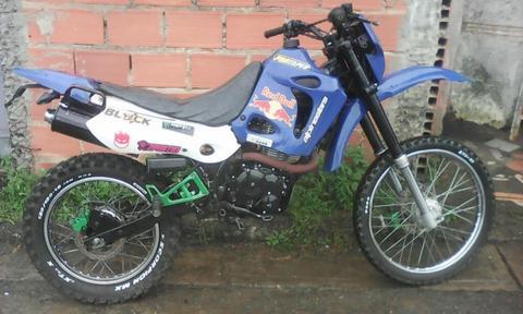 T Rex Enduro 200