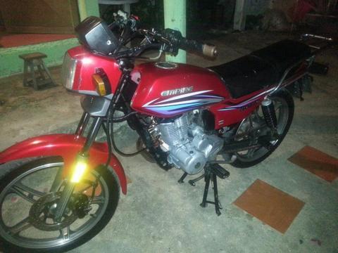 Moto Horse 2013