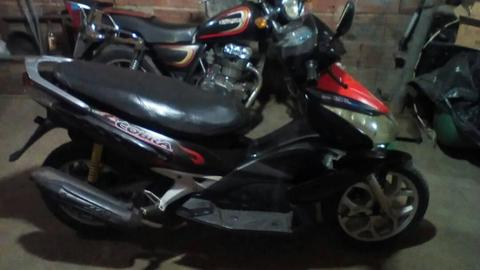 Vendo Bera COBRA 2009